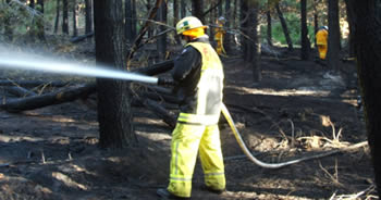 NSWFB and RFS crews mop up after the fire, Photo by Captain John Vandeven