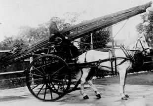Black and white photo of an old fire horse and cart.